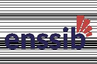 École nationale supérieure des sciences de l'information et des bibliothèques (Enssib)